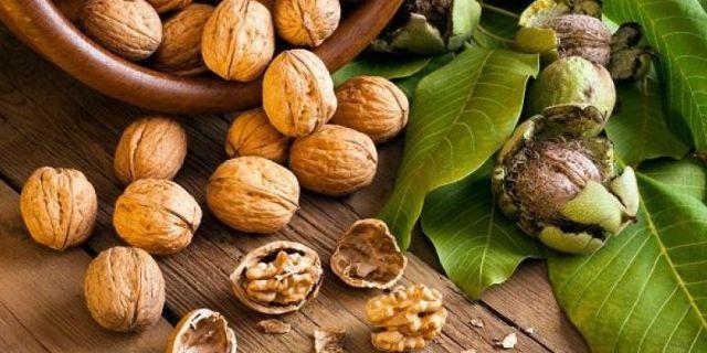Kandungan-Nutrisi-dan-Manfaat-Kacang-Kenari-untuk-Kesehatan